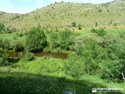 Carcavas de Alpedrete de la Sierra y Meandros del Lozoya;excursiones y senderismo;solana de avila